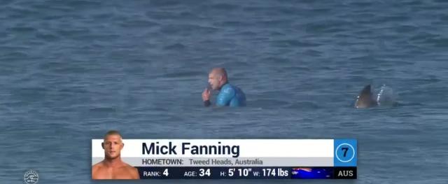 Tubarão momentos antes de colidir com Fanning. Arquivo WSL.